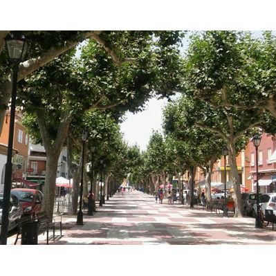 Avenida Arrabal de Requena
